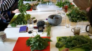 table of herbs