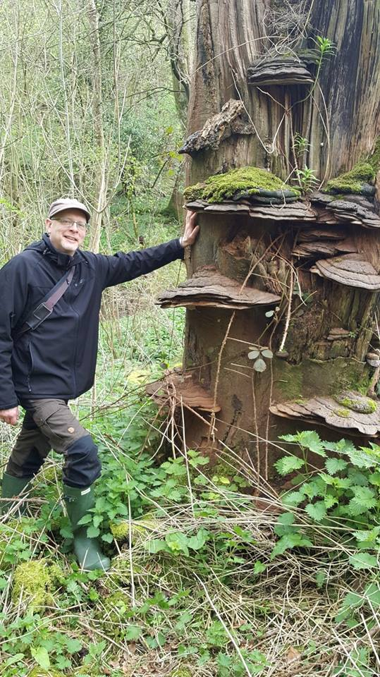 Fred the Forager with Artists' Fungus
